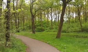 Onderweg naar De Specht (GC38RE0)
